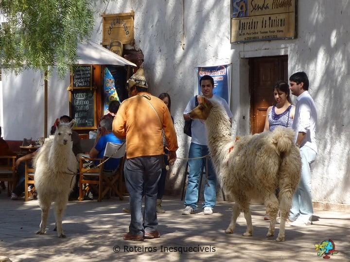 Praca - San Pedro de Atacama - Deserto de Atacama
