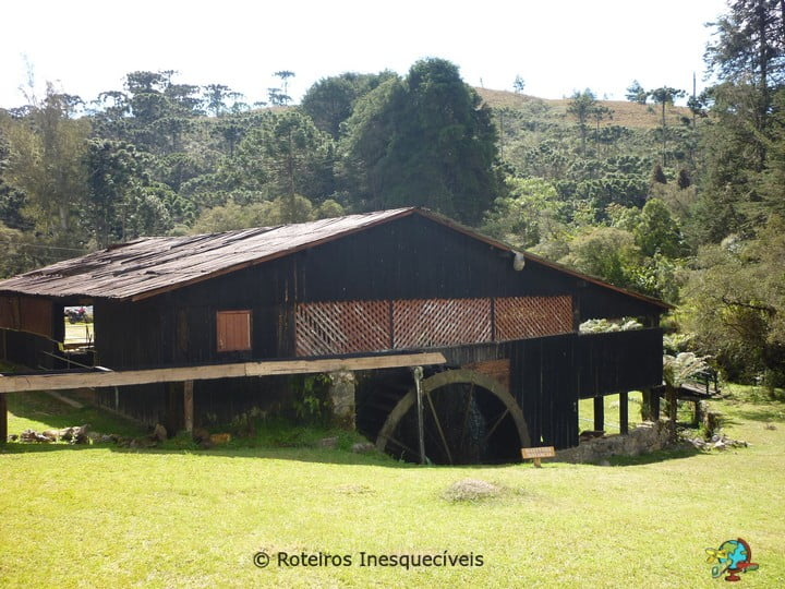 Horto Florestal - Campos do Jordao