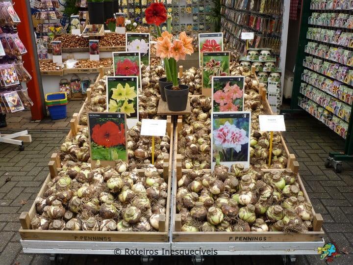 Mercado de Flores - Amsterdam - Holanda
