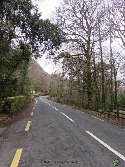 Estrada - Kerry Ring - Irlanda