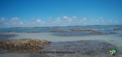 Gales de Maragogi - Alagoas