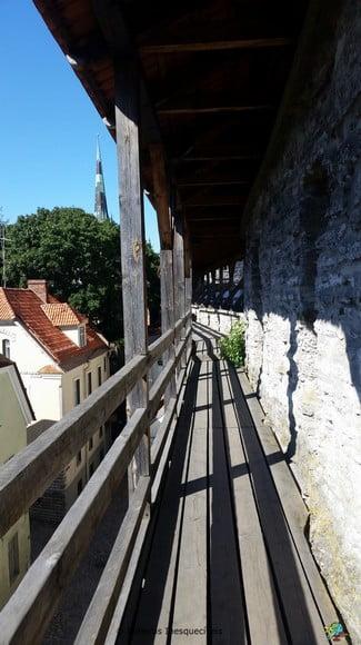 Hellemann Tower & Wall - Tallinn - Estonia