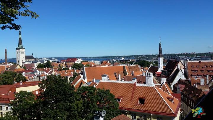 Mirante Kohtuotsa - Tallinn - Estonia